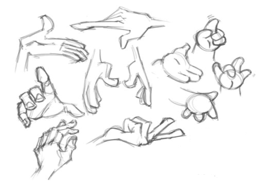 hands_cartoon_drawing_how_fingers_joints_palms_human_anatomy